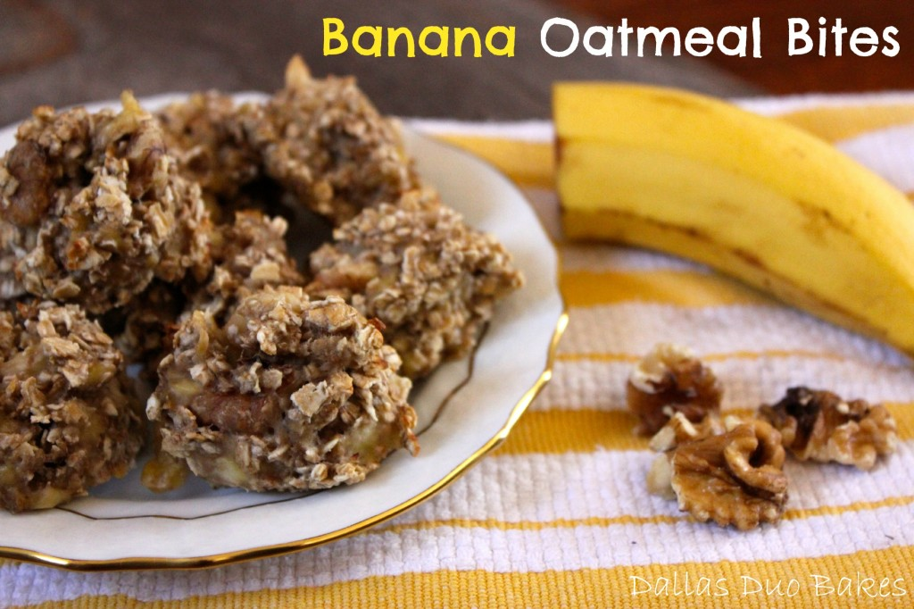 Banana Oatmeal Bites – Dallas Duo Bakes