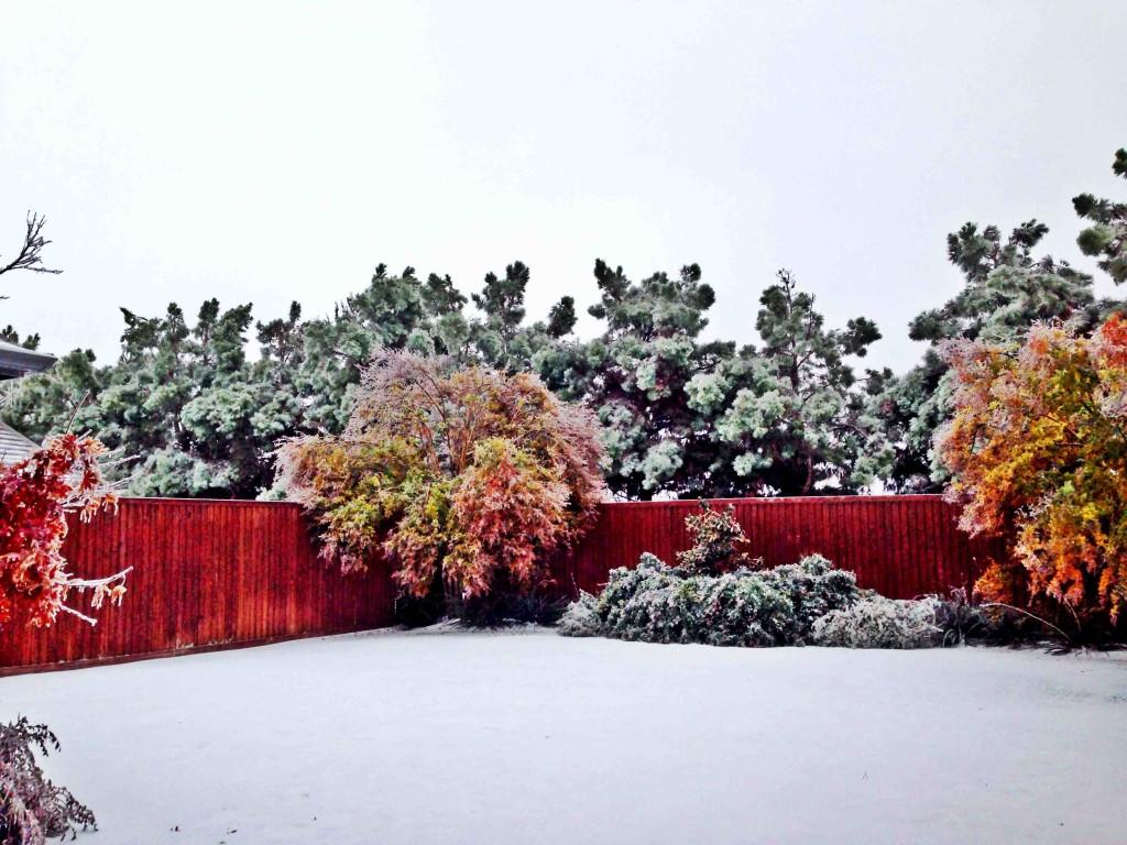 dallas ice storm